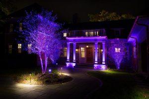 Цветное освещение в саду