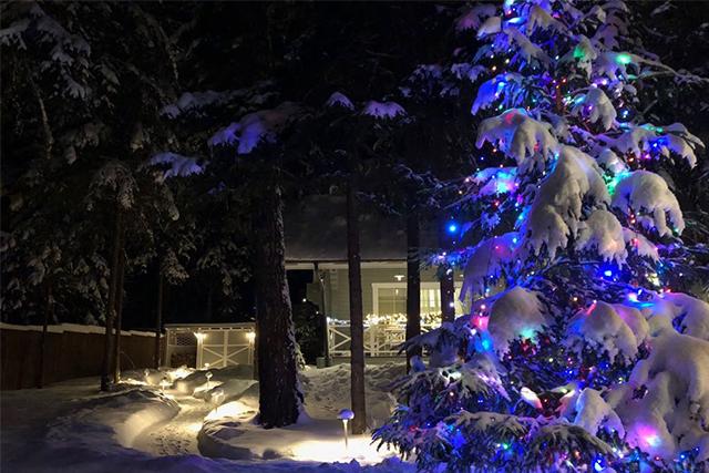 Садовое освещение зимой